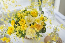 【 Flower Photo in January】Yellow