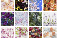【Flower Collage】 series  has been updated