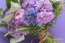 【 Flower Photo in March】Purple