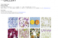 """Flower Collage"" series  has been updated"