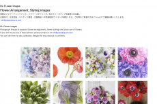 DL-Flower images has been updated