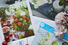 【Calendar 2019】Photos for Flower calendars