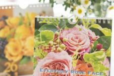 【カレンダー 】Everyday Rose Face 2017 日めくりカレンダー 発売中