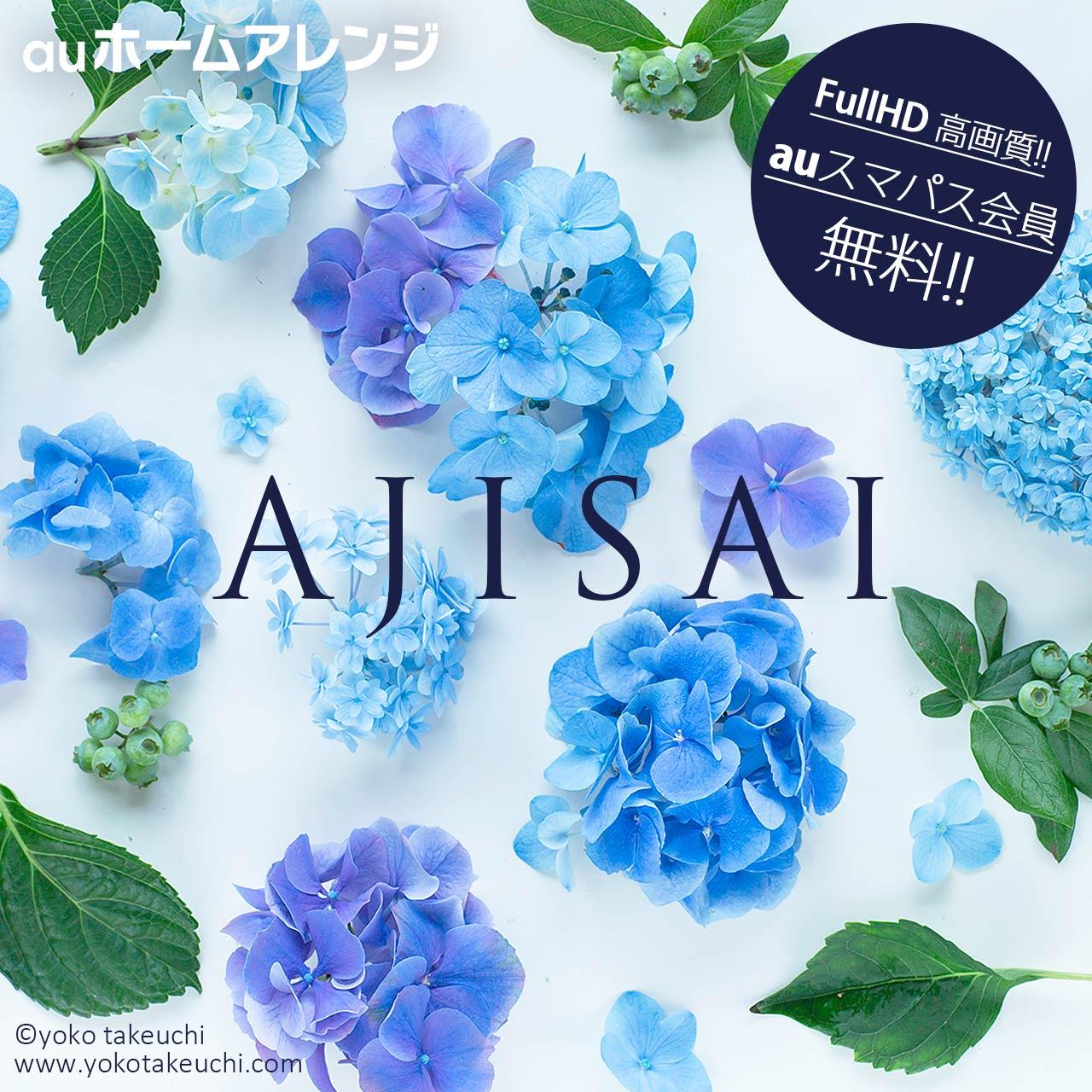 Au スマートパス 壁紙 19 竹内陽子 Yokotakeuchi フラワーアーティスト Flower Artist 写真家 フォトグラファー