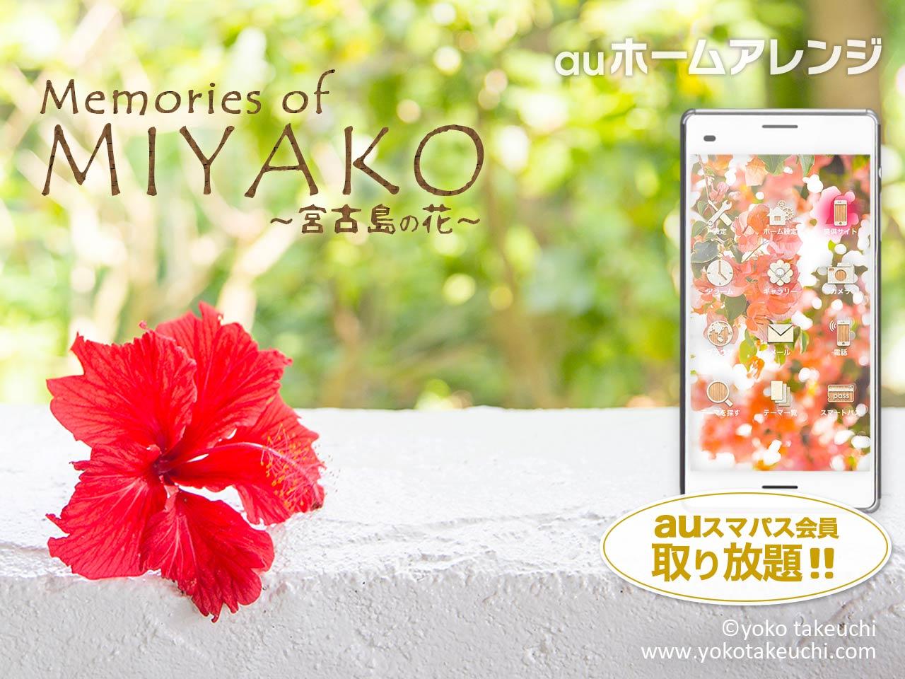Au スマートパス 壁紙 17 竹内陽子 Yokotakeuchi フラワーアーティスト Flower Artist 写真家 フォトグラファー