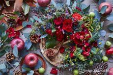 【Flower photo in December】 Red Rose