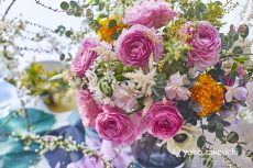 【 Flower photo in February 2021】Ranunculus