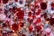 【 Monthly Flower Collage 】December  2020