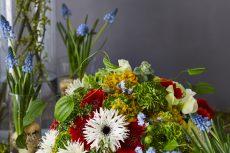 【Flower photo in January】 Ranunculus